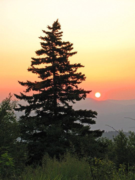 Backpacking on Mount LeConte - Boulevard Side