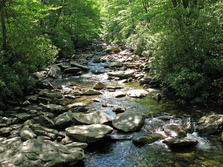 Riverbed Great Smokey Mountains