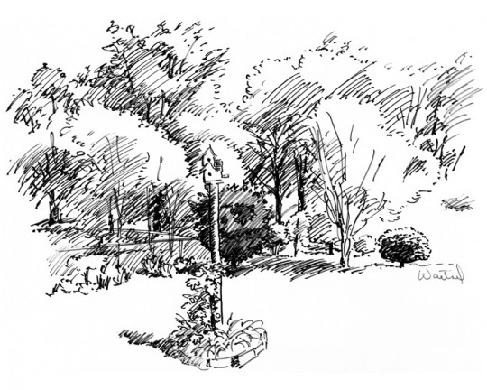 Garden with Birdhouse, pen and ink drawing by Waitsel Smith