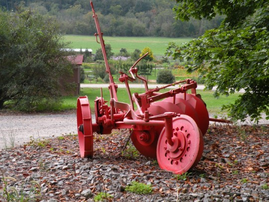 Red Tiller at Antler Hill Village, Biltmore