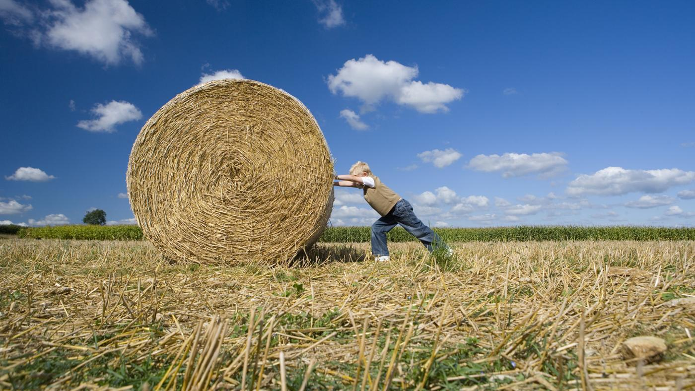 hay-roll-pushed-by-little-boy