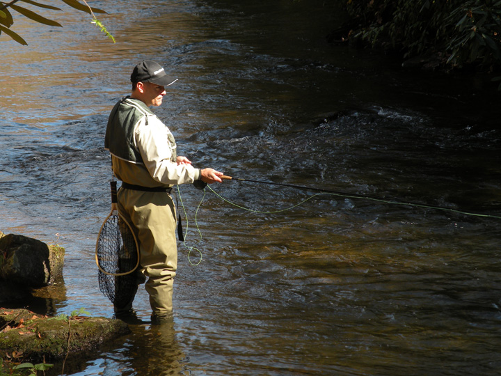 Fly fishing the french broad for French broad river fishing